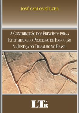 CONTRIBUICAO DOS PRINCIPIOS PARA A EFETIVIDADE DO PROCESSO DE EXECUCAO NA JUSTICA DO TRABALHO