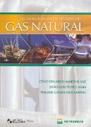 TECNOLOGIA DA INDUSTRIA DO GAS NATURAL