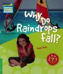 WHY DO RAINDROPS FALL? - LEVEL 3