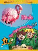 BIRDS - THE MYSTERIOUS EGG - LEVEL 3