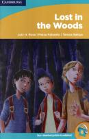 LOST IN THE WOODS - LEVEL 2