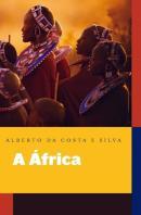 AFRICA EXPLICADA AOS MEUS FILHOS, A