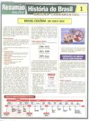 HISTORIA DO BRASIL 1 - COLONIA