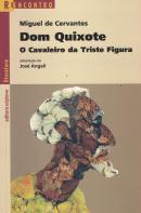 DOM QUIXOTE - O CAVALEIRO DA TRISTE FIGURA - 4ª ED
