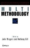 MULTIMETHODOLOGY